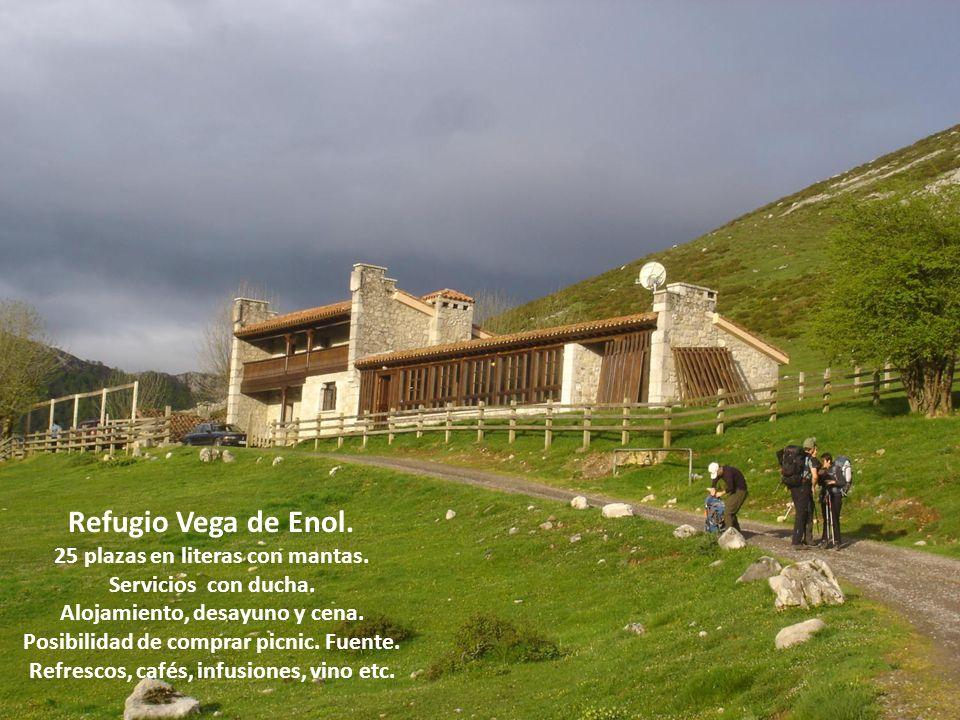 Refugio Vega de Enol. 25 plazas en literas con mantas. Servicios con ducha. Alojamiento, desayuno y cena. Posibilidad de comprar picnic. Fuente. Refre