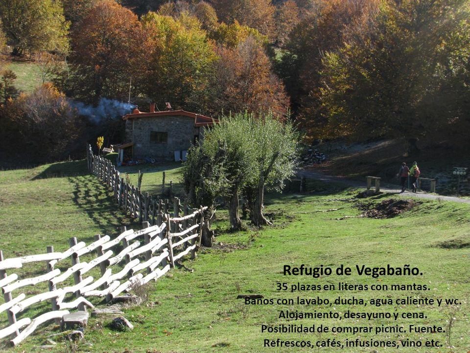 Refugio de Vegabaño. 35 plazas en literas con mantas. Baños con lavabo, ducha, agua caliente y wc. Alojamiento, desayuno y cena. Posibilidad de compra