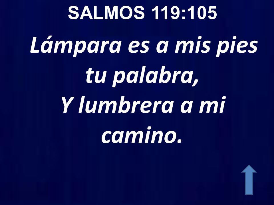 SALMOS 119:105 Lámpara es a mis pies tu palabra, Y lumbrera a mi camino.