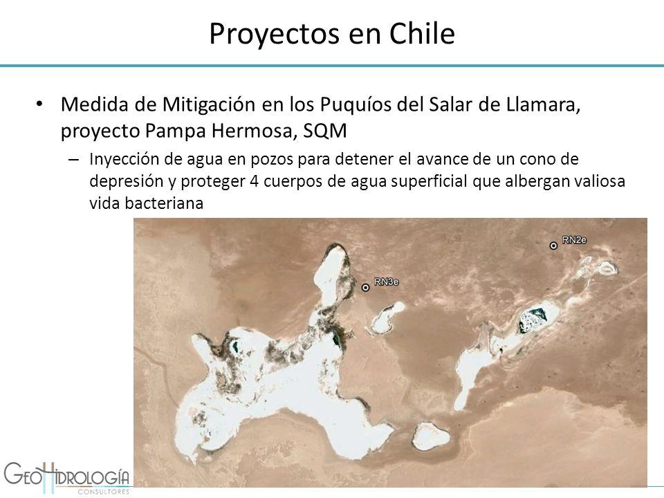 Proyectos en Chile Medida de Mitigación en los Puquíos del Salar de Llamara, proyecto Pampa Hermosa, SQM – Inyección de agua en pozos para detener el