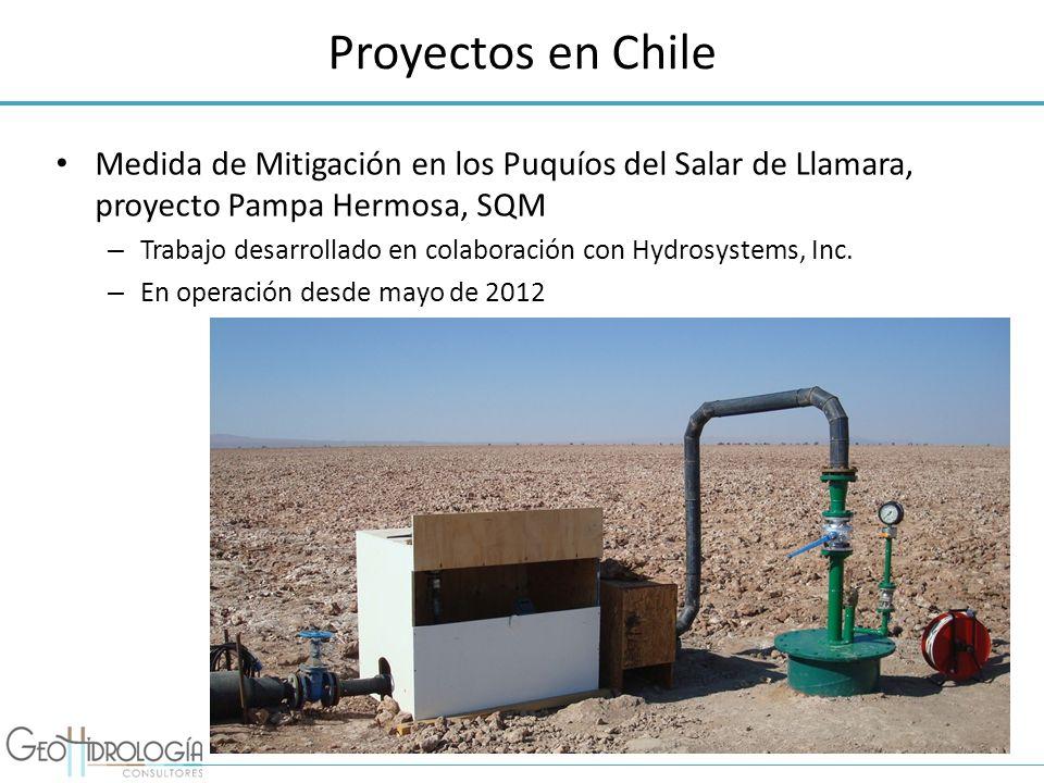 Proyectos en Chile Medida de Mitigación en los Puquíos del Salar de Llamara, proyecto Pampa Hermosa, SQM – Trabajo desarrollado en colaboración con Hy