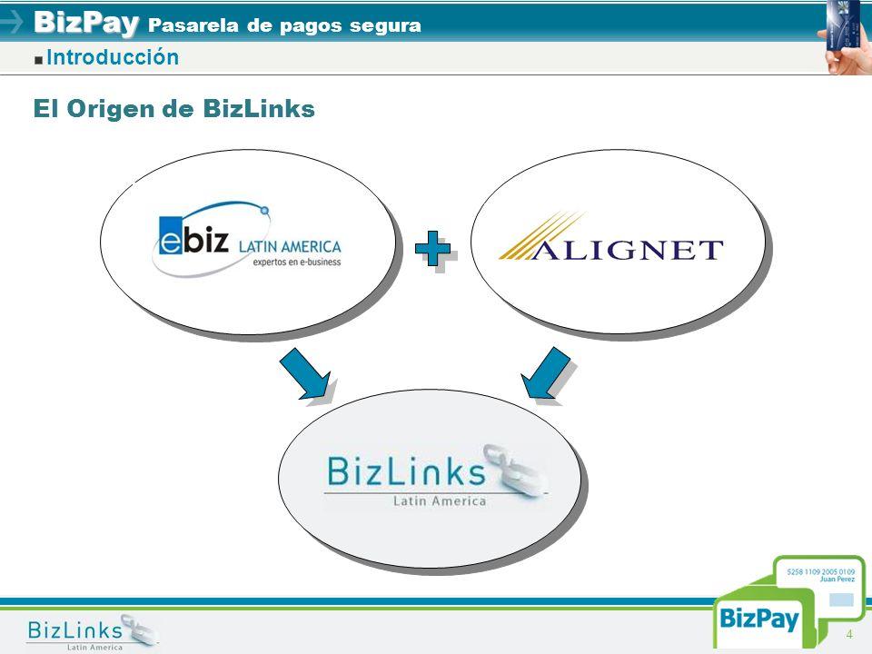 BizPay BizPay Pasarela de pagos segura 4 Introducción El Origen de BizLinks