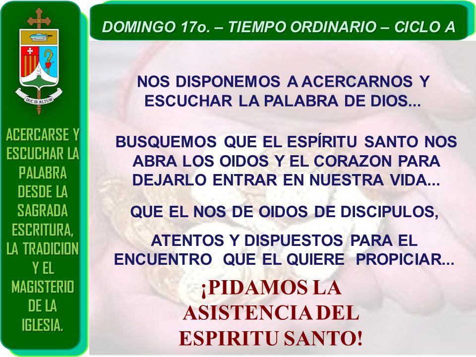 ACERCARSE Y ESCUCHAR LA PALABRA DESDE LA SAGRADA ESCRITURA, LA TRADICION Y EL MAGISTERIO DE LA IGLESIA. DOMINGO 17o. – TIEMPO ORDINARIO – CICLO A NOS
