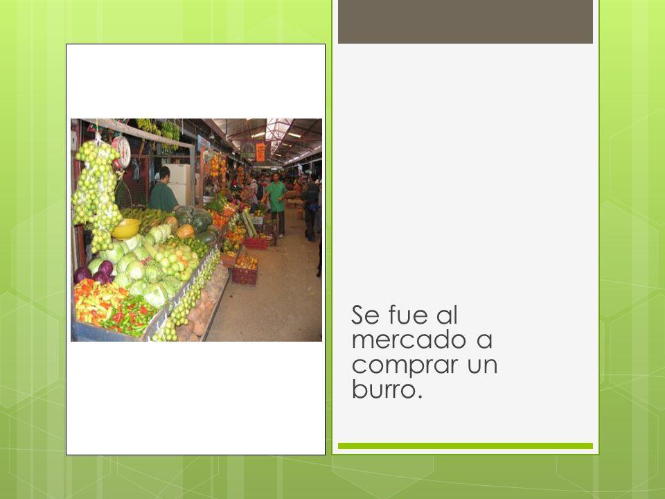 Se fue al mercado a comprar un burro.