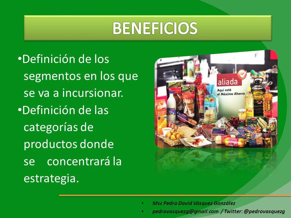 Msc Pedro David Vásquez González pedrovasquezg@gmail.com / Twitter: @pedrovasquezg Definición de los segmentos en los que se va a incursionar. Definic