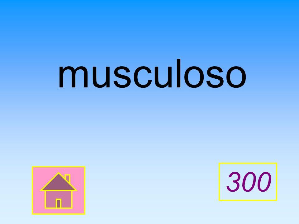 musculoso 300