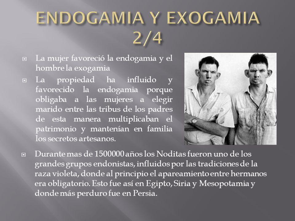 La mujer favoreció la endogamia y el hombre la exogamia La propiedad ha influido y favorecido la endogamia porque obligaba a las mujeres a elegir mari