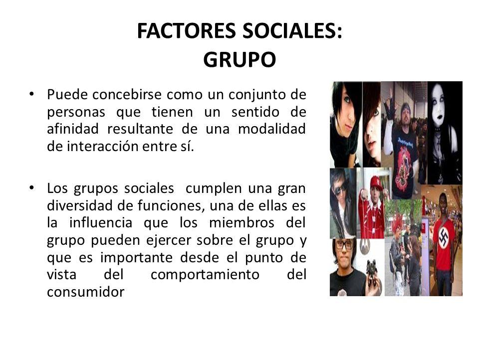 FACTORES SOCIALES: GRUPO Puede concebirse como un conjunto de personas que tienen un sentido de afinidad resultante de una modalidad de interacción en