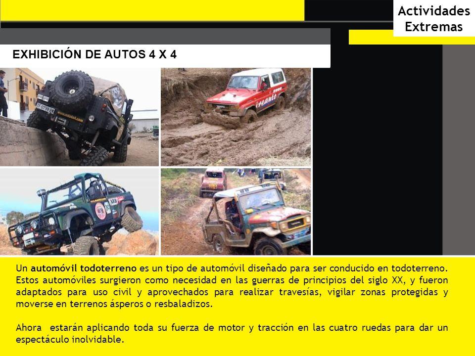 CAR AUDIO Y DESFILE DE CHICAS CAR AUDIO El Car Audio es personalizado y generalmente la instalación es totalmente única, jugando con distintos modelos