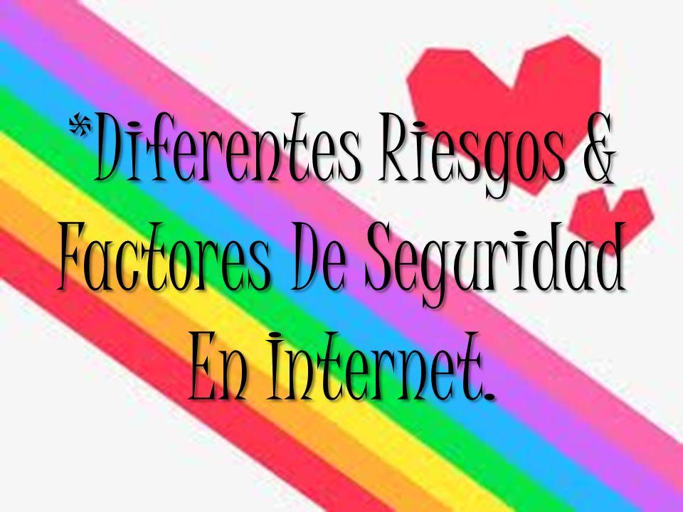 *Diferentes Riesgos & Factores De Seguridad En Internet.