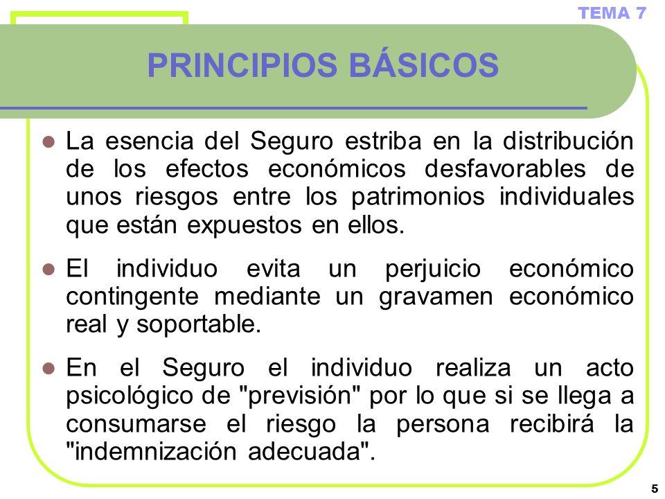 5 PRINCIPIOS BÁSICOS La esencia del Seguro estriba en la distribución de los efectos económicos desfavorables de unos riesgos entre los patrimonios in