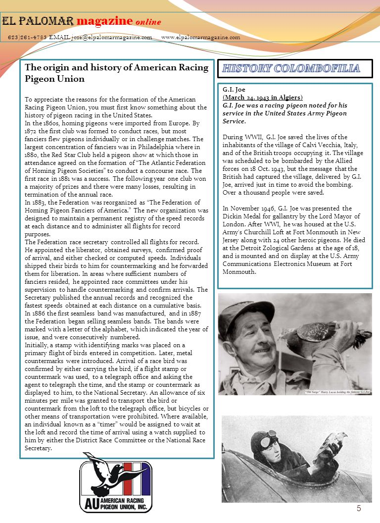 EL PALOMAR magazine online 623)261-4783 EMAIL jose@elpalomarmagazine.com www.elpalomarmagazine.com The origin and history of American Racing Pigeon Union To appreciate the reasons for the formation of the American Racing Pigeon Union, you must first know something about the history of pigeon racing in the United States.