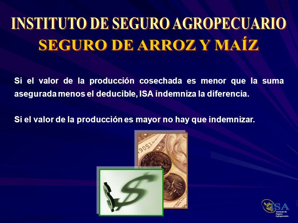 Si el valor de la producción cosechada es menor que la suma asegurada menos el deducible, ISA indemniza la diferencia. Si el valor de la producción es