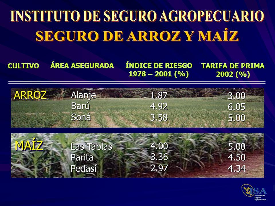 El Inspector de Seguro evalúa las condiciones del cultivo y el grado de afectación que registra, y debe dar seguimiento a la evolución del daño hasta la cosecha.