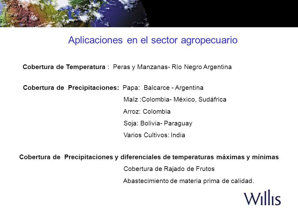 El Cultivo de Soja en Paraguay Factores de expansión del cultivo Incorporación de tecnología a través de Agro-exportadores y proveedores de insumos que financiaron maquinarias y agroquímicos.