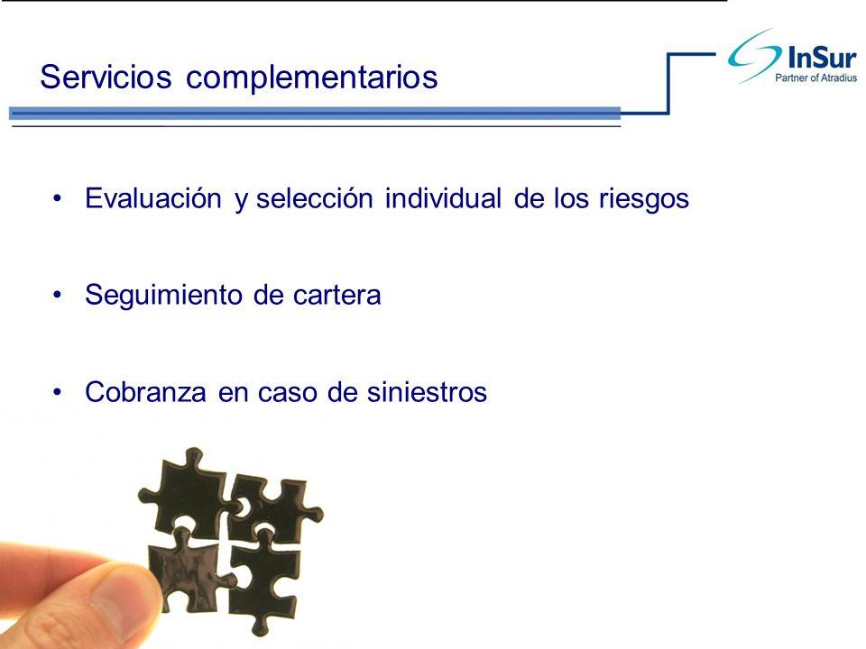 Servicios complementarios Evaluación y selección individual de los riesgos Seguimiento de cartera Cobranza en caso de siniestros
