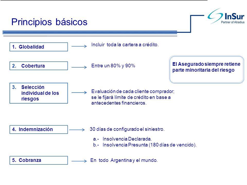 Principios básicos Incluir toda la cartera a crédito. 1. Globalidad 2.Cobertura Entre un 80% y 90% a.- Insolvencia Declarada. b.- Insolvencia Presunta
