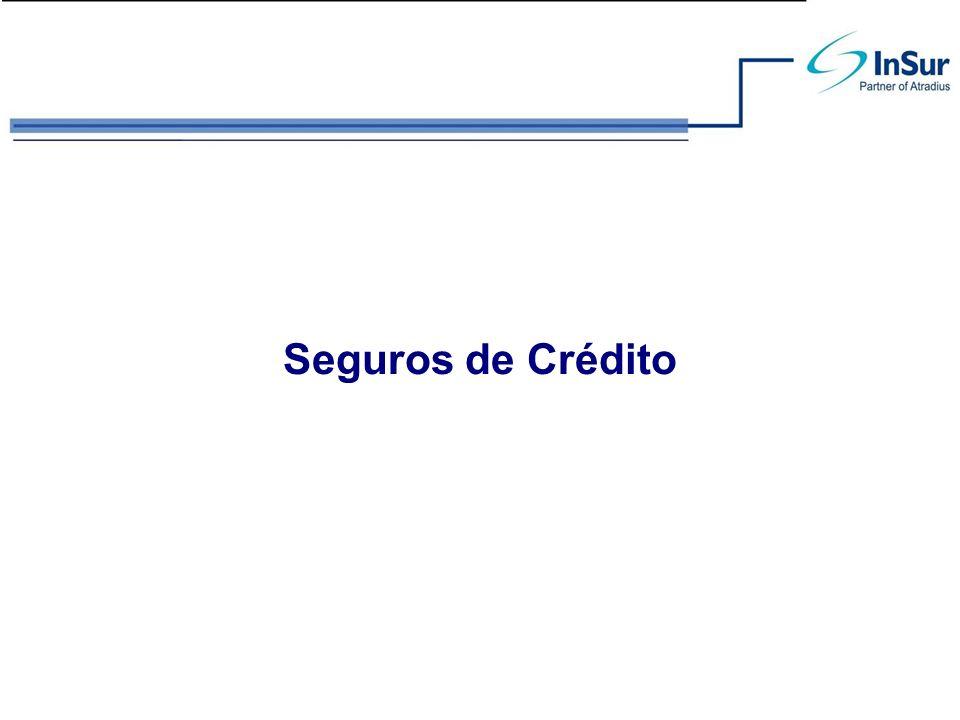 Seguro de Crédito - Función Protege a la empresa del riesgo de no pago de las ventas a crédito tanto en el mercado nacional como en el internacional.