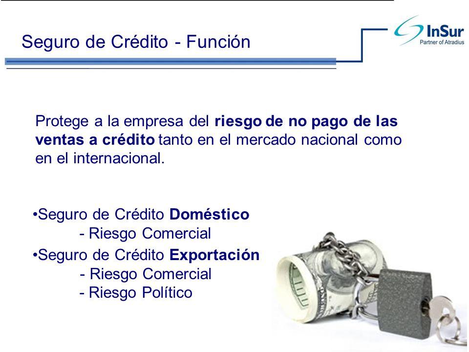 ¿Cómo opera el Seguro de Crédito.