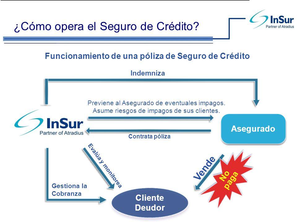 ¿Cómo opera el Seguro de Crédito? Cliente Deudor Asegurado Vende Gestiona la Cobranza Paga Evalúa y monitorea Previene al Asegurado de eventuales impa