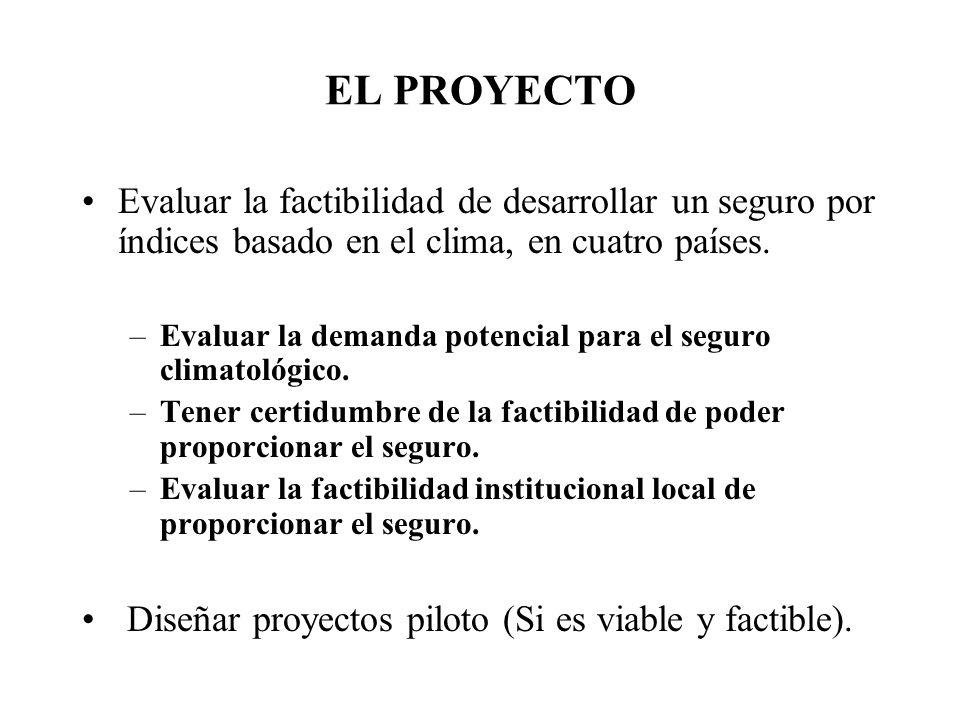 EL PROYECTO Evaluar la factibilidad de desarrollar un seguro por índices basado en el clima, en cuatro países. –Evaluar la demanda potencial para el s