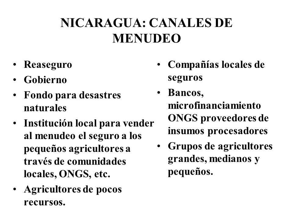 NICARAGUA: CANALES DE MENUDEO Reaseguro Gobierno Fondo para desastres naturales Institución local para vender al menudeo el seguro a los pequeños agricultores a través de comunidades locales, ONGS, etc.
