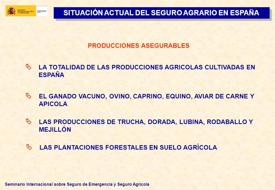 Seminario Internacional sobre Seguro de Emergencia y Seguro Agrícola LA TOTALIDAD DE LAS PRODUCCIONES AGRICOLAS CULTIVADAS EN ESPAÑA EL GANADO VACUNO,