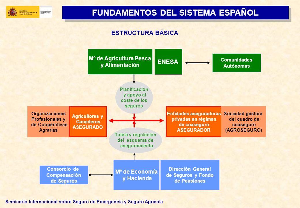 Seminario Internacional sobre Seguro de Emergencia y Seguro Agrícola ESTRUCTURA BÁSICA FUNDAMENTOS DEL SISTEMA ESPAÑOL Tutela y regulación del esquema