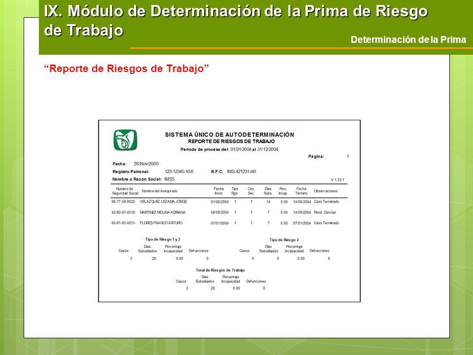 Determinación de la Prima Reporte de Riesgos de Trabajo IX. Módulo de Determinación de la Prima de Riesgo de Trabajo