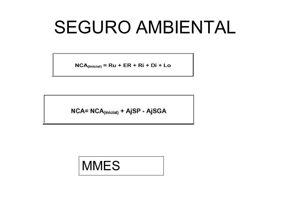 SEGURO AMBIENTAL MMES