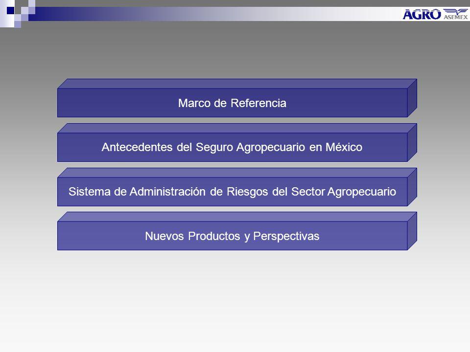 Marco de Referencia Sistema de Administración de Riesgos del Sector Agropecuario Nuevos Productos y Perspectivas Antecedentes del Seguro Agropecuario en México