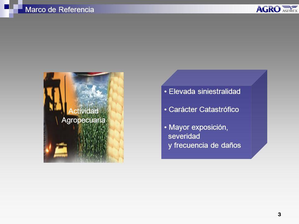 3 Actividad Agropecuaria Elevada siniestralidad Carácter Catastrófico Mayor exposición, severidad y frecuencia de daños Marco de Referencia
