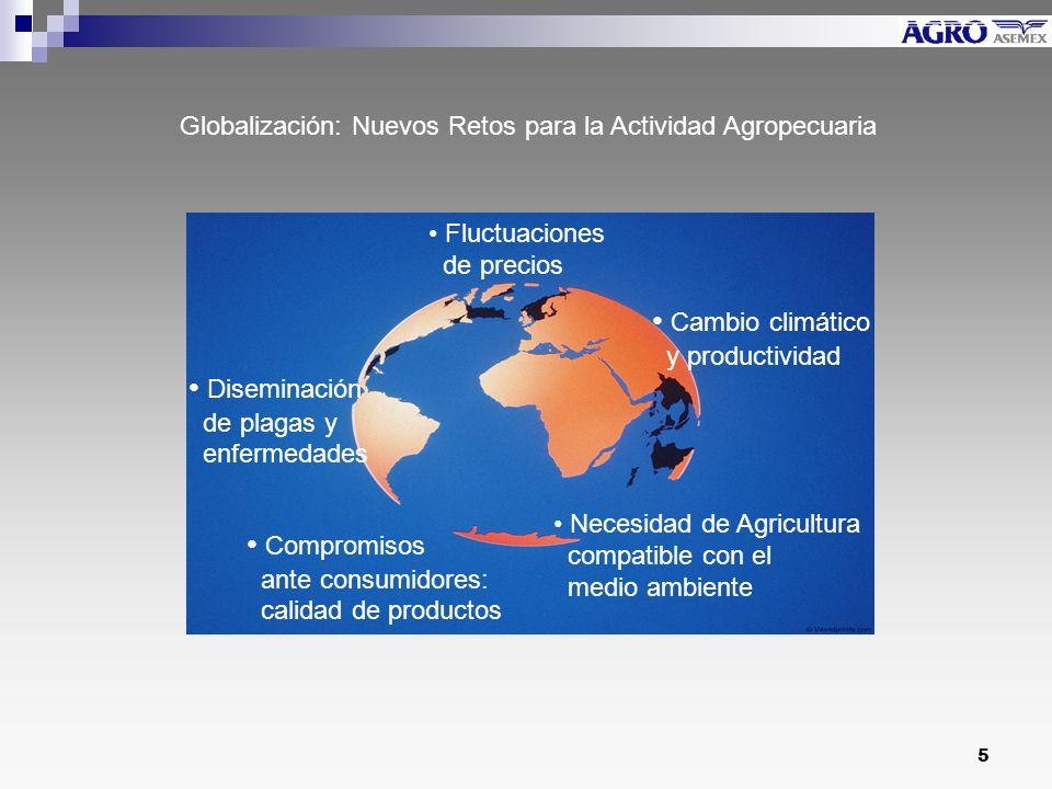 5 Fluctuaciones de precios Diseminación de plagas y enfermedades Compromisos ante consumidores: calidad de productos Cambio climático y productividad Necesidad de Agricultura compatible con el medio ambiente Globalización: Nuevos Retos para la Actividad Agropecuaria