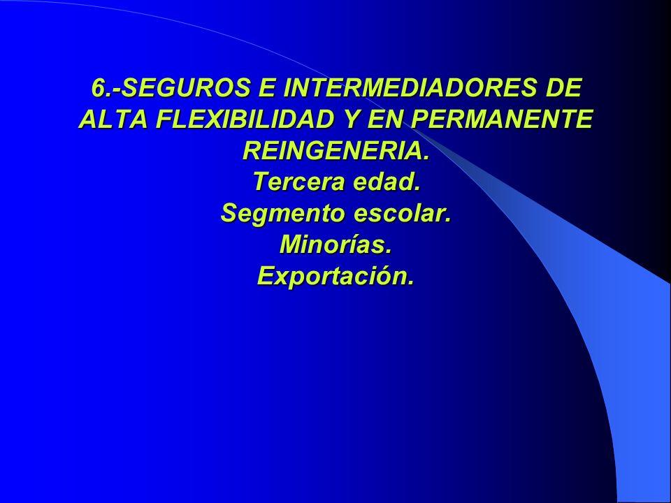 6.-SEGUROS E INTERMEDIADORES DE ALTA FLEXIBILIDAD Y EN PERMANENTE REINGENERIA. Tercera edad. Segmento escolar. Minorías. Exportación.