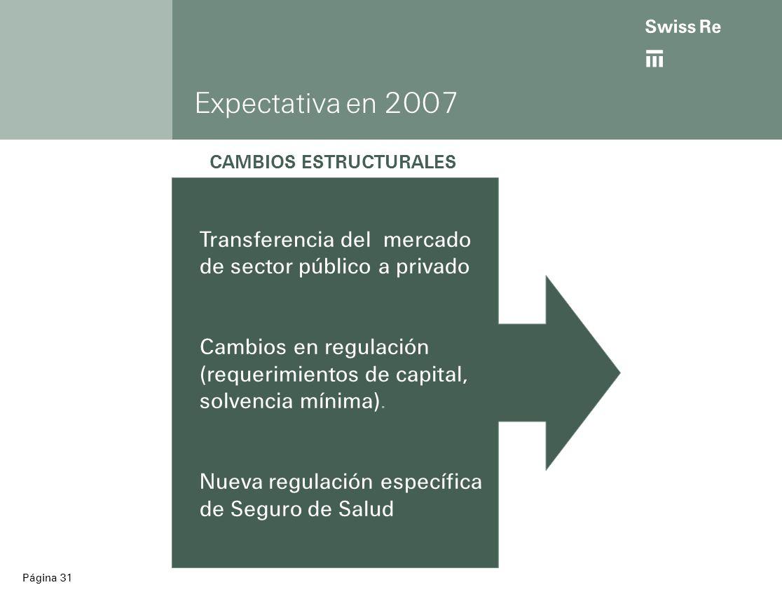 ab Página 31 Expectativa en 2007 Transferencia del mercado de sector público a privado Cambios en regulación (requerimientos de capital, solvencia mínima).
