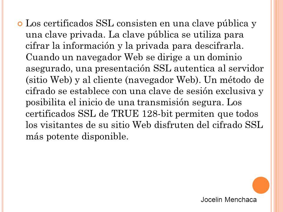 Los certificados SSL consisten en una clave pública y una clave privada.