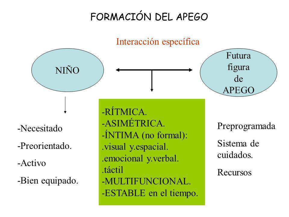 FORMACIÓN DEL APEGO NIÑO Futura figura de APEGO Interacción específica -RÍTMICA. -ASIMÉTRICA. -ÍNTIMA (no formal):.visual y.espacial..emocional y.verb