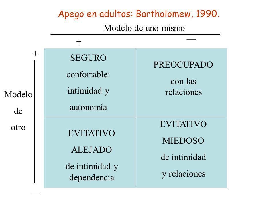 Apego en adultos: Bartholomew, 1990. Modelo de uno mismo + __ Modelo de otro + __ SEGURO confortable: intimidad y autonomía PREOCUPADO con las relacio