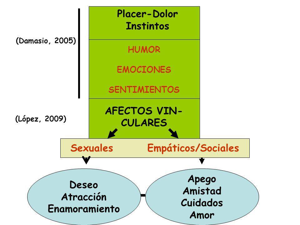 HUMOR EMOCIONES SENTIMIENTOS AFECTOS VIN- CULARES Deseo Atracción Enamoramiento Apego Amistad Cuidados Amor Sexuales Empáticos/Sociales (Damasio, 2005) (López, 2009) Placer-Dolor Instintos