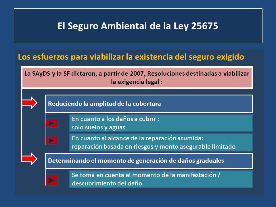 El Seguro Ambiental de la Ley 25675 Los esfuerzos para viabilizar la existencia del seguro exigido La SAyDS y la SF dictaron, a partir de 2007, Resolu