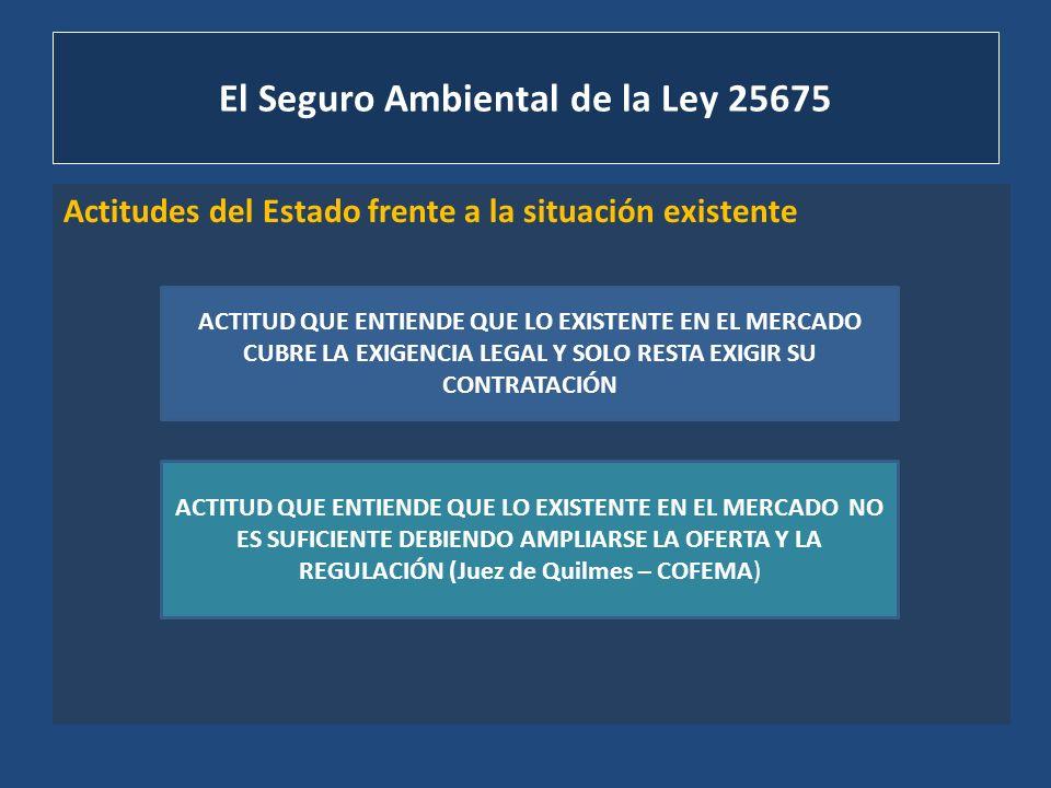 El Seguro Ambiental de la Ley 25675 Actitudes del Estado frente a la situación existente Juez de Quilmes: no existe a la fecha reglamentación suficiente para dar cumplimiento a la exigencia establecida en el art.