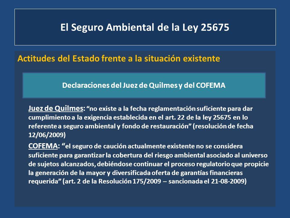El Seguro Ambiental de la Ley 25675 Actitudes del Estado frente a la situación existente Juez de Quilmes: no existe a la fecha reglamentación suficien