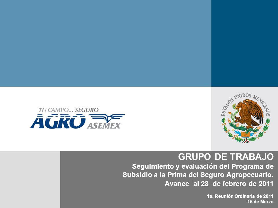 GRUPO DE TRABAJO Seguimiento y evaluación del Programa de Subsidio a la Prima del Seguro Agropecuario. Avance al 28 de febrero de 2011 1a. Reunión Ord