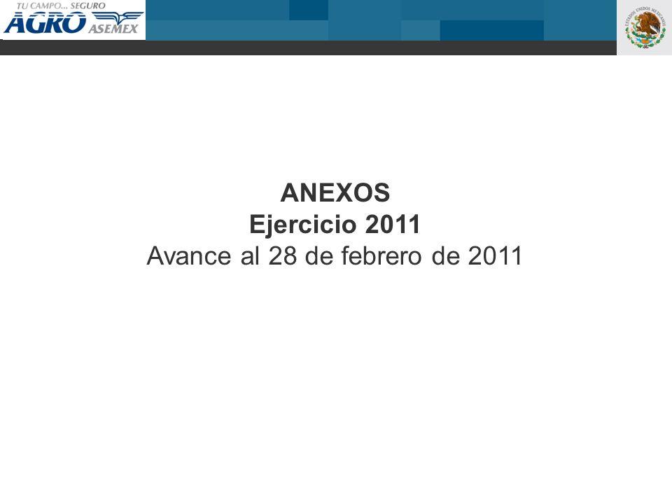 ANEXOS Ejercicio 2011 Avance al 28 de febrero de 2011