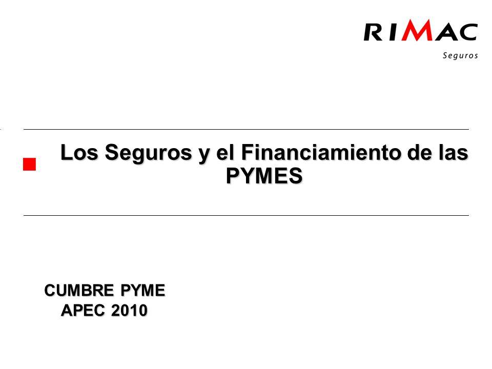 Los Seguros y el Financiamiento de las PYMES CUMBRE PYME APEC 2010