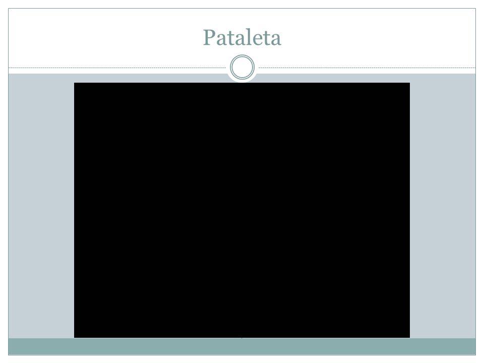 Pataleta