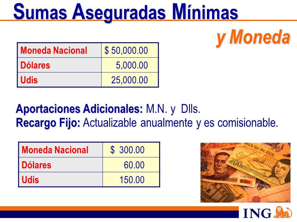 S umas A seguradas M ínimas y Moneda S umas A seguradas M ínimas y Moneda Moneda Nacional $ 50,000.00 Dólares 5,000.00 Udis 25,000.00 Aportaciones Adi