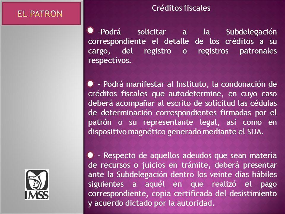 Créditos fiscales -Podrá solicitar a la Subdelegación correspondiente el detalle de los créditos a su cargo, del registro o registros patronales respectivos.