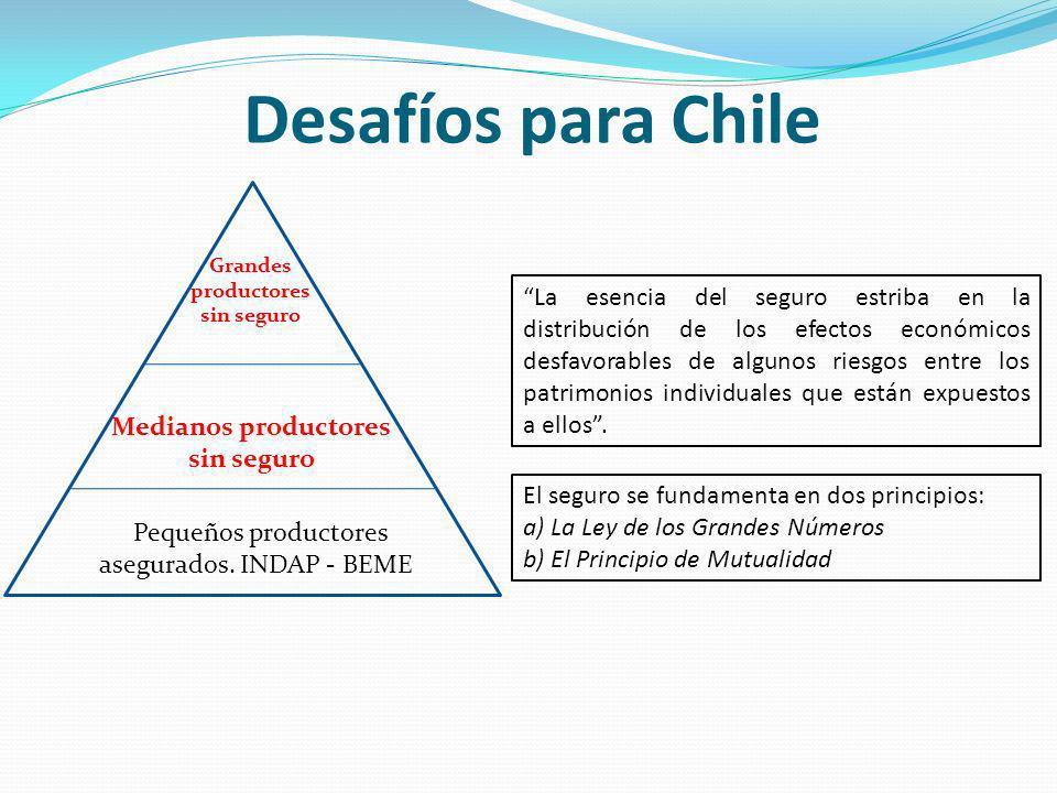 Desafíos para Chile Pequeños productores asegurados.
