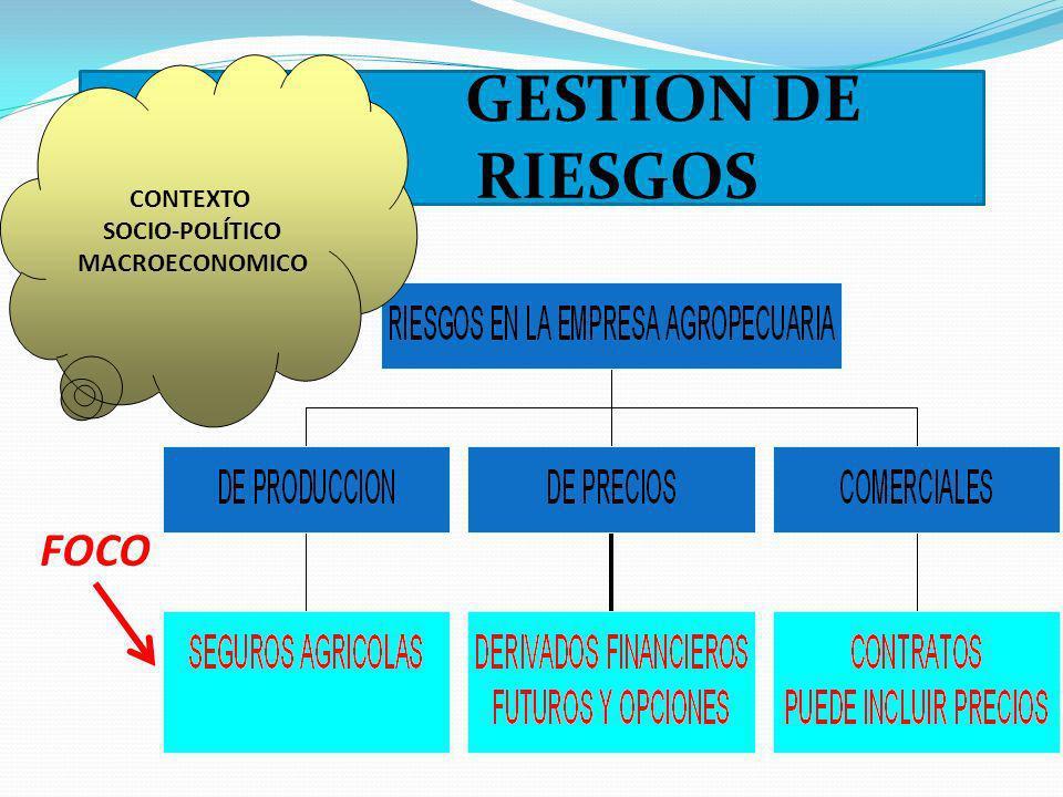 GESTION DE RIESGOS CONTEXTO SOCIO-POLÍTICO MACROECONOMICO FOCO